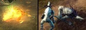 《暗黑破坏神3》巫医召唤宠物被移除