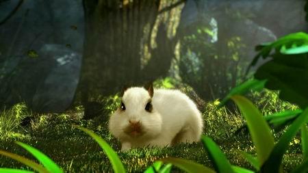 cg中可爱的宠物兔