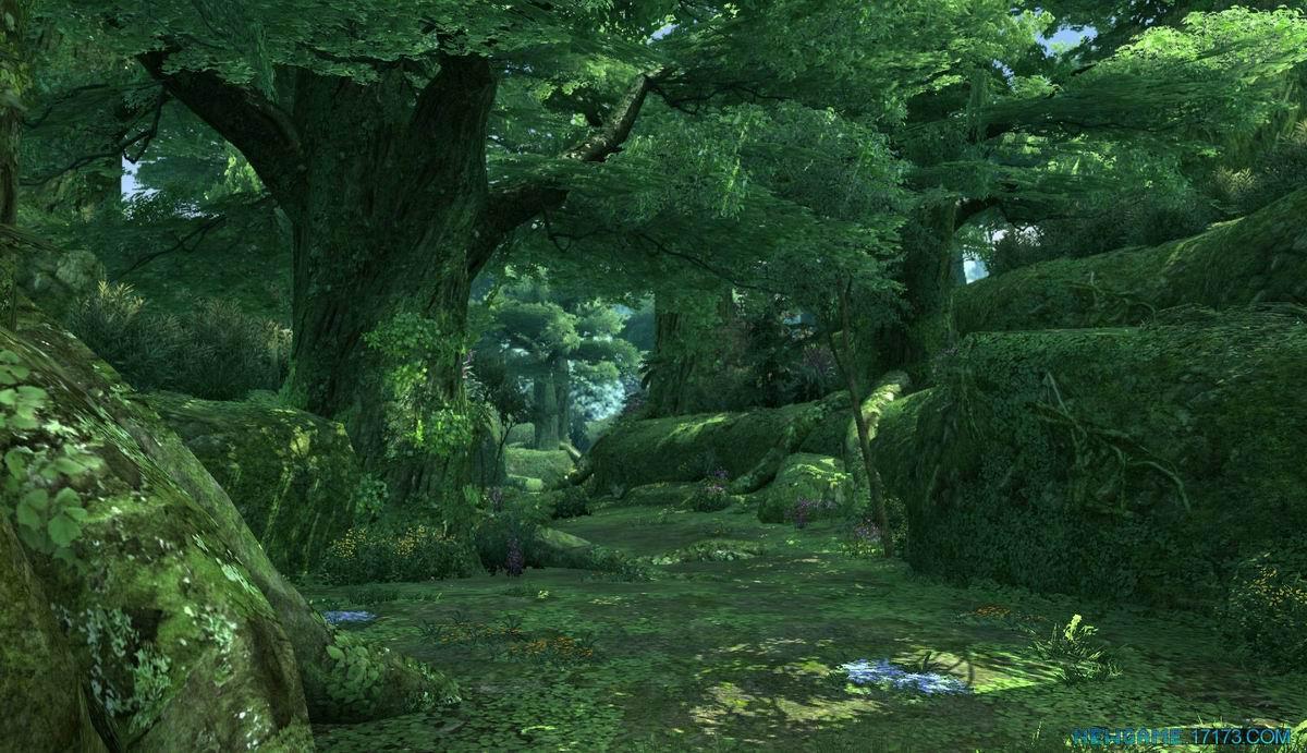 壁纸 风景 森林 桌面 1200_691