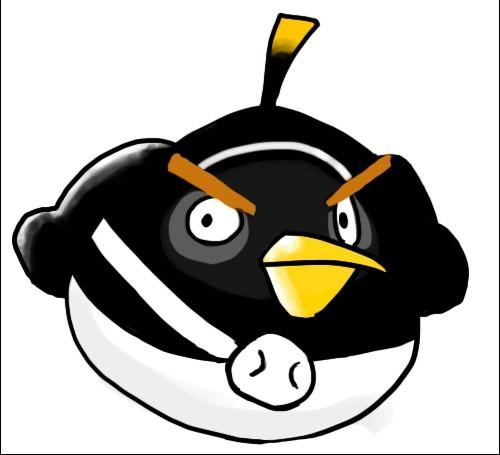 黑色小鸟psd素材