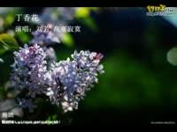 流行歌曲 车站 高寒寂寞 刘紫玲_17173游戏播