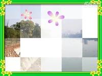 神仙湾中华鲟园一日游-中华鲟视频视频_1717口精华托v视频图片