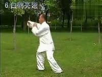 张吉平混元24式背面演示口令教学太极拳剑扇