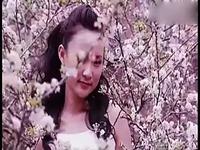 牧羊曲 龚玥经典歌曲选-歌曲 焦点视频_17173