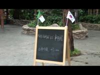 完整版 No.32 23日 韩国vs阿尔及利亚 猩猩预测